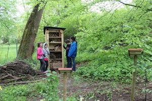 Aufstellen eines Insektenhotels im Frühjahr 2013
